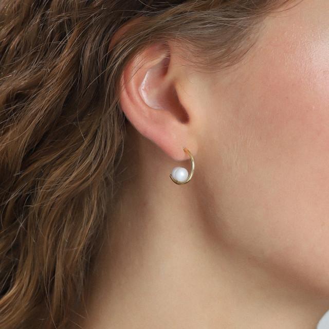 AMA ørering